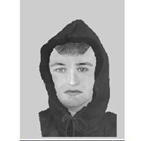 Photo fit - assault attempted robbery in Ongar on 17.9.13